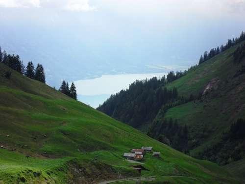 Alm Landscape Alpine Mountains Meadow