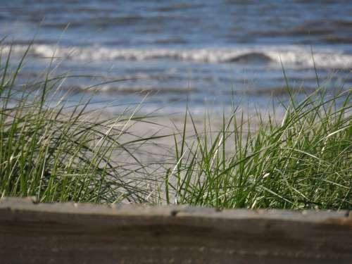Ameland Beach North Sea Sea