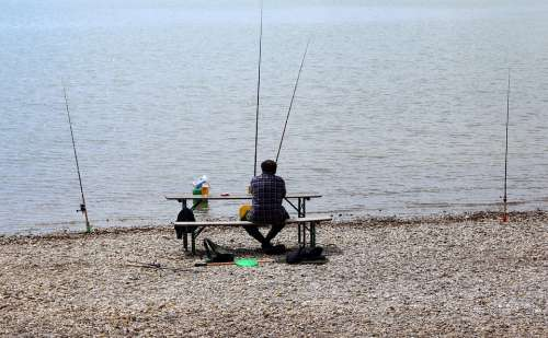 Angler Fish Fishing Catch Fish Man Lake Water