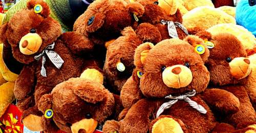 Animals Bear Bears Toy Toys Stuffed Animals