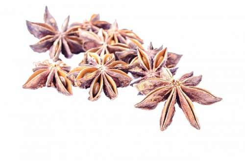 Aniseed White Isolated Natural Many Spice Seeds