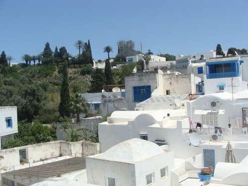 Arabic Houses Blue White Tunis Spectacular