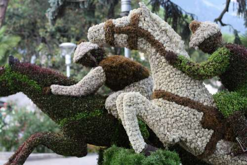 Art Nature Sport Meran South Tyrol Jockeys Hedge