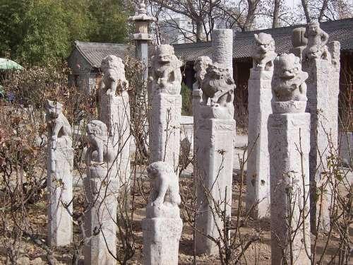 Art Sculptures China
