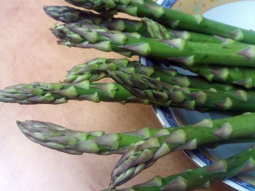 Asparagus Trigueros Food Power Vegetable