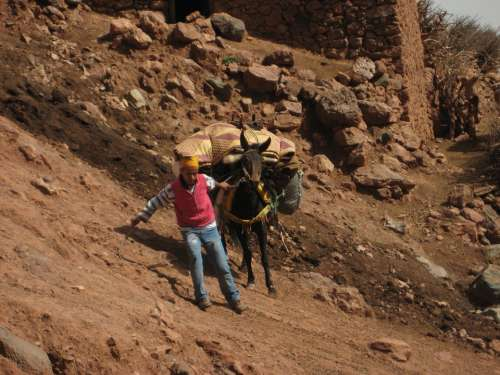 Atlas Mountains Mule Slip Trekking Hiking Carrier