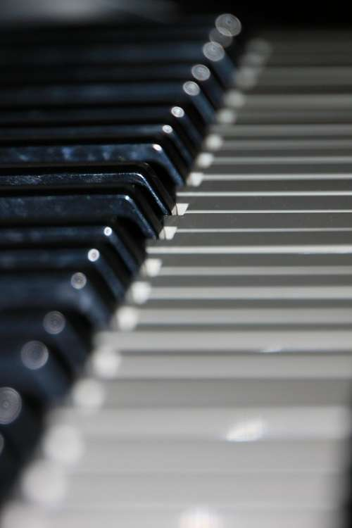 Audio Close-Up Electronic Keyboard Music Piano