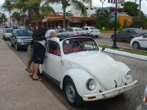Auto Vw Beetle Vw Beetle Oldtimer Dare Vehicle