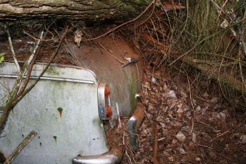 Auto Old Rust Car Cemetery Oldtimer Trunk