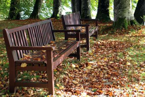 Autumn Bench Seat Nature Rest Out Wood Bank