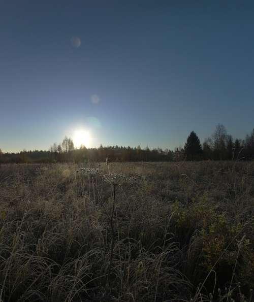 Autumn Sun Dawn Pan Frost Dew Grass Trees