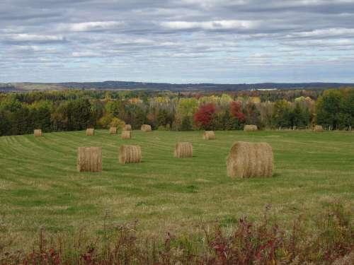 Autumn Fall Maine Field Aroostook Houlton