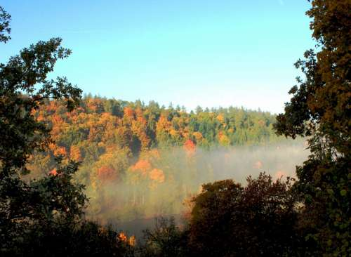 Autumn Fog Landscape Forest Sun Trees Sky