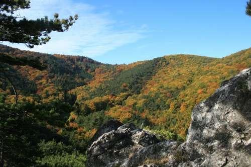 Autumn Mood Rock Autumn Nature Forest Landscape