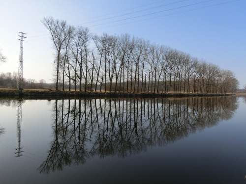 Avenue Trees Water Mirroring Landscape Rest