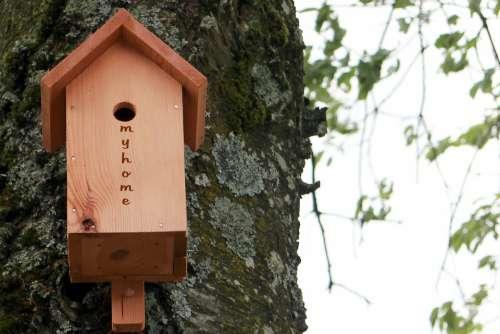 Aviary Bird Feeder Nesting Box Nesting Help