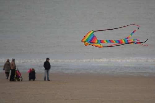 Aviator Sea Colors Air People Beach