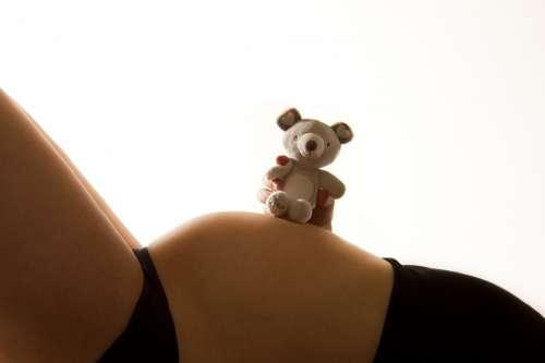 Baby Bump Pregnant Pregnancy Teddy Toy Child