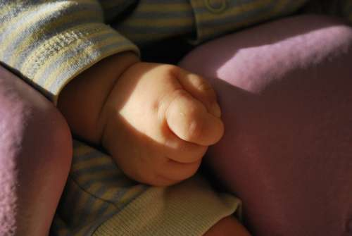 Baby Hand Child Cute Fingers Hands Small Infant