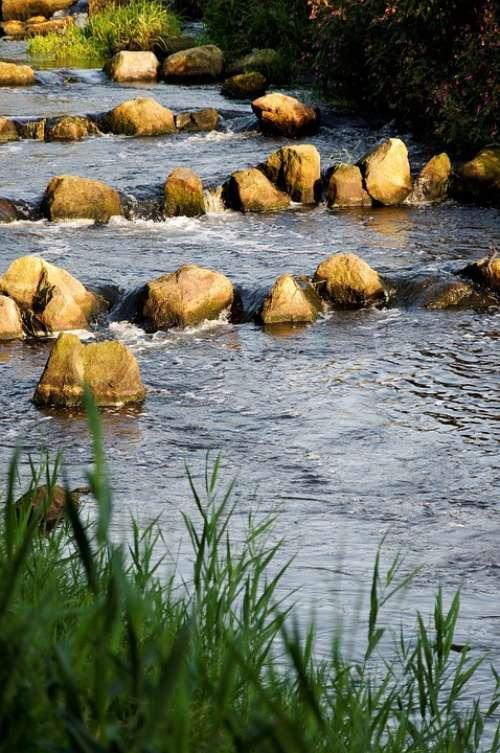 Bach Grass Sun Bank Stones Splash Riverbed Water