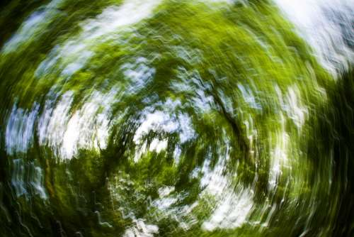Background Strudel Abstract Trees