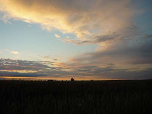 Badajoz Field Sky Clouds Nature Sunset Horizon