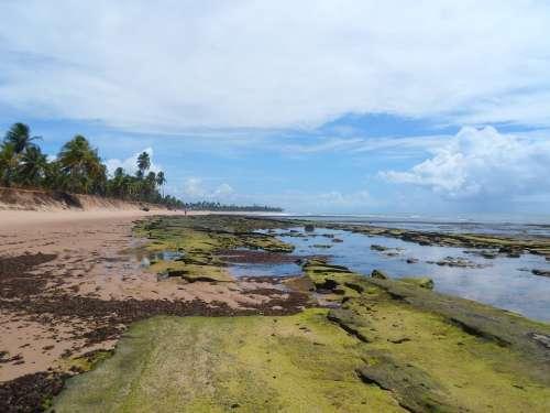 Bahia Deserted Beach Strong Beach Brazil