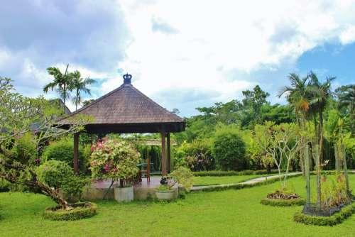 Bali Orchid Garden Flora Tropical Island Indonesia
