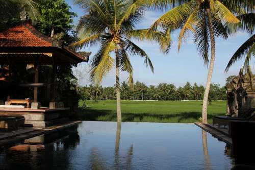 Bali Indonesia Pool Palms Resort Vacations