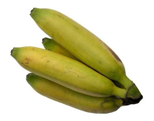 Bananas Fruit Banana Shrub Vitamins Sugar Sweet