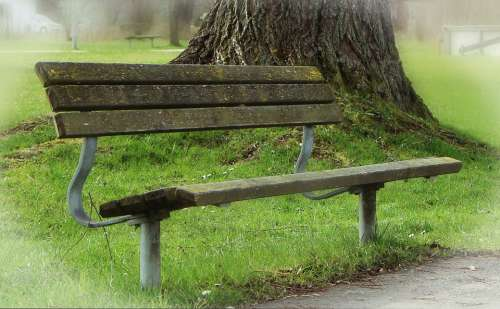 Bank Seat Park Bench Rest Recovery