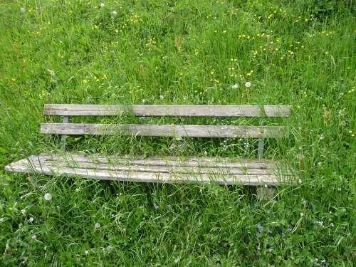 Bank Seat Flower Meadow Alpine Overgrown