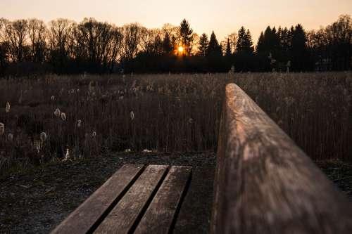 Bank Sunset Twilight Abendstimmung Nature