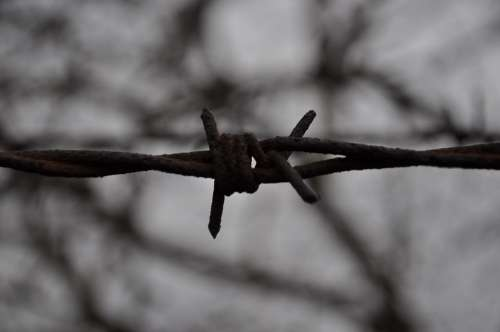 Barbed Wire Metal Rods