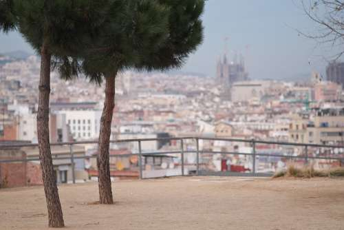 Barcelona Sagrada Familia Spain Catalonia Cathedral
