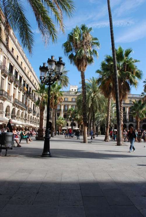 Barcelona Place View Palm Tree Spain Architecture
