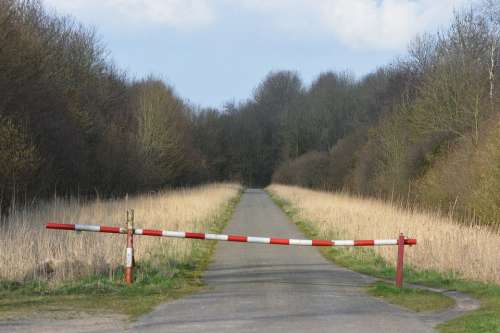 Barrier Gates Walking Path Nature Forest