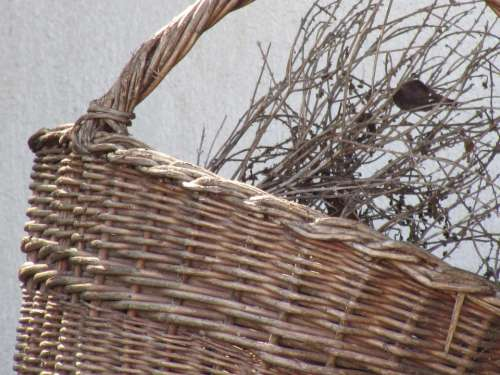 Basket Woven Wicker Decorative Carry Cot