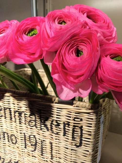 Basket Pink Flowers Spring Decoration Bouquet