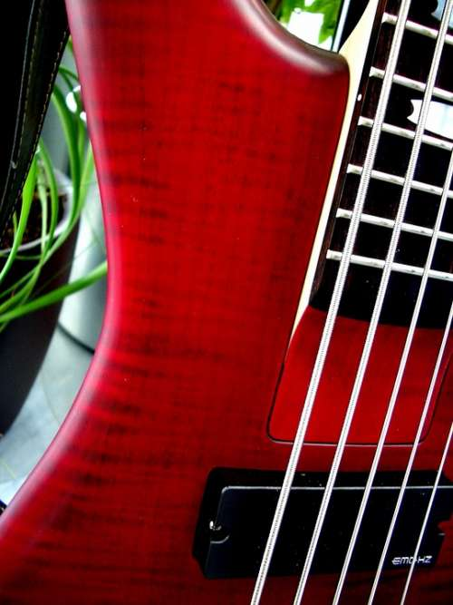 Bass E Bass 5 String Strings Music Instrument Red