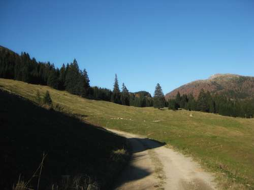 Bavaria Germany Landscape Scenic Mountains Forest