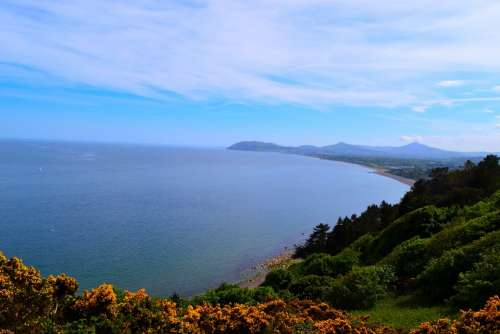 Bay Water View Gorse Sky Sea Ireland Killiney