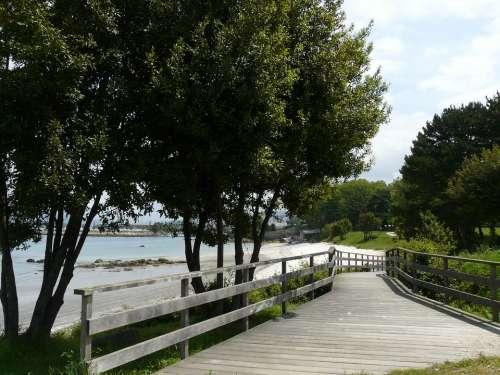 Beach Walk Nature Gateway Green Path