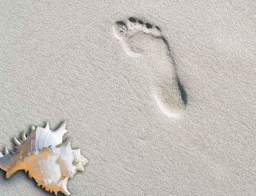 Beach Sand Summer Footprint Shell