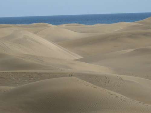 Beach Dunes Dune Sea Wave Nature Canary Islands