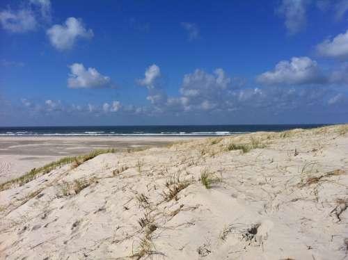 Beach Sea Water Vlieland