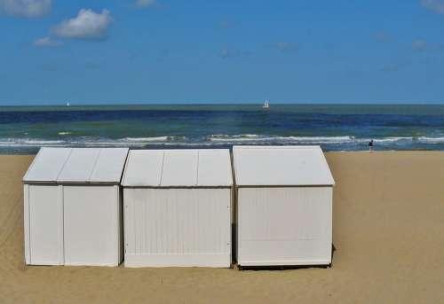 Beach Coast Sea North Sea Surf Wave Sky Clouds