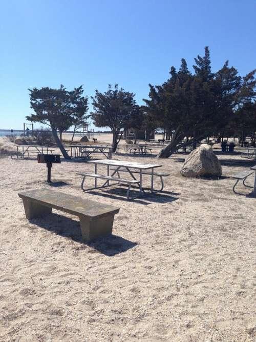 Beach Sea Picnic Water Vacation Summer Resort