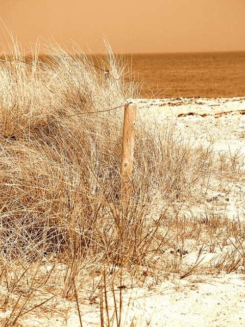 Beach Sand North Sea