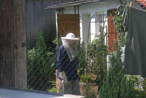 Beekeeper Bees Garden Honey Bees Bee Keeping